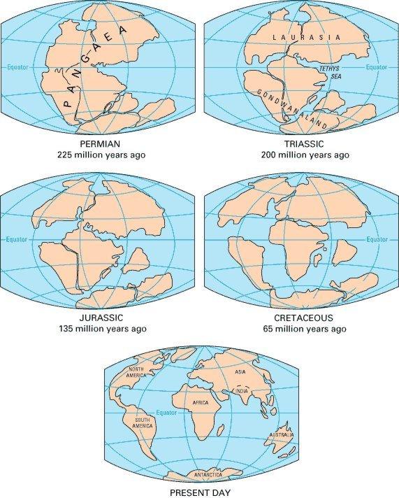 A proposta de Wegener para a fragmentação do Supercontinente Pangea: Fonte U.S. Geological Survey