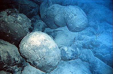 Lavas com forma de almofadas (pillows). Fonte: National Oceanographic and Atmospheric Administration (NOAA)